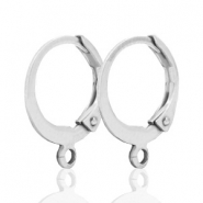DQ earrings 12mm Silver plated