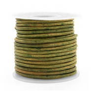 Benefit package DQ leather round 2 mm Vintage Moss Green