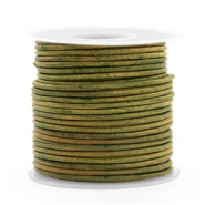 Benefit package DQ leather round 1 mm Vintage Moss Green