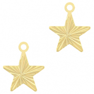 Brass TQ metal charms star Gold