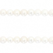 Freshwater pearls round 6mm Natural White