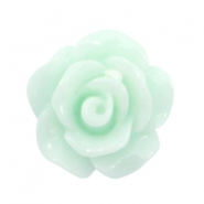 Shiny rose beads 10mm Light mint green